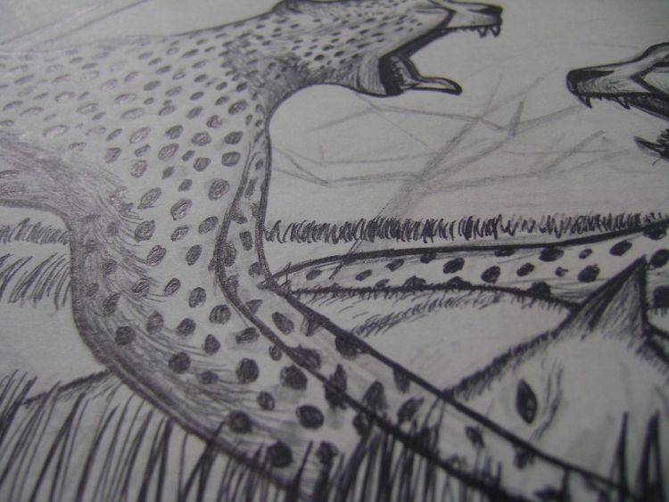 wild - cheetah, art, drawing, painting - odinelpierre | ello