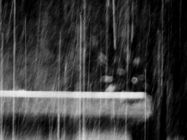 Pouring rain. skies opened time - tehranchik | ello