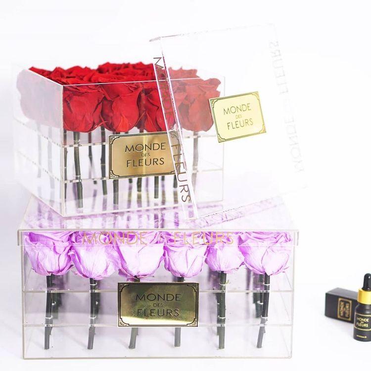 Blumenkasten - Bestellen Sie on - monde-des-fleurs | ello