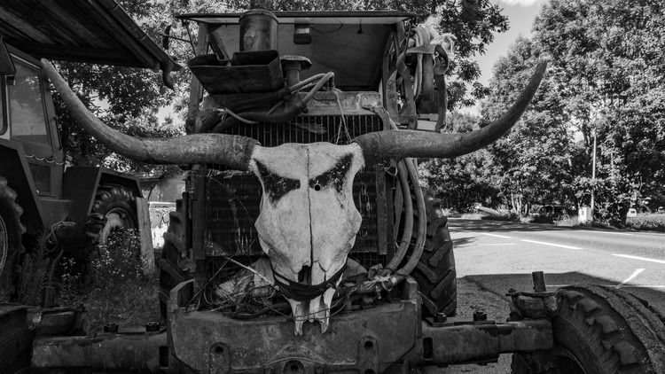 Friendly tractor - nature, farm - marcstipsits | ello