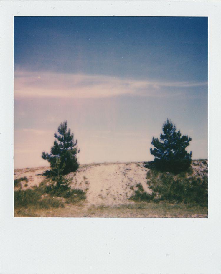 Polaroid 600 - giovannasantinolli | ello