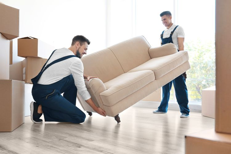 Professional Moving service Pla - murphyfamily8 | ello