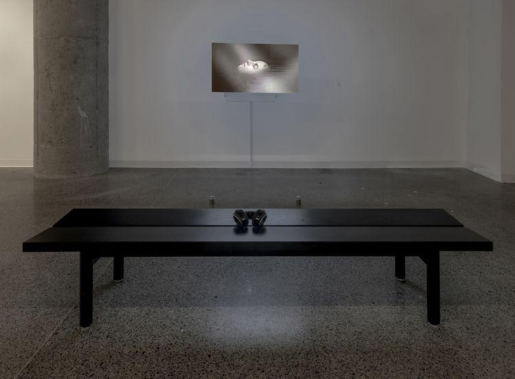 Fossiles Possibles - MOCA, installation - charlinedally   ello