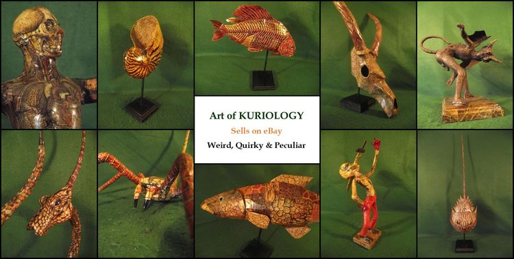 Art Kuriology eBay Auction Sund - kuriology | ello