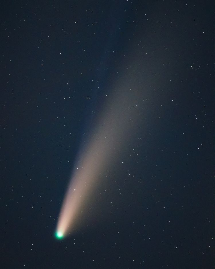 Comet Neowise - goldendog | ello