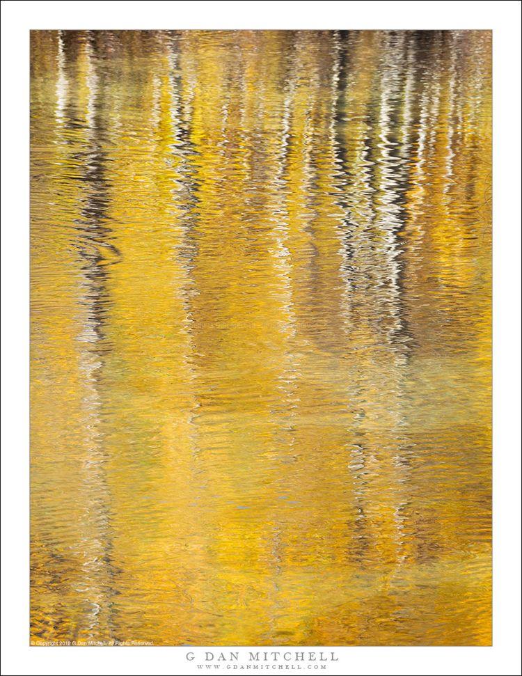 Aspen Reflections. Copyright 20 - gdanmitchell | ello