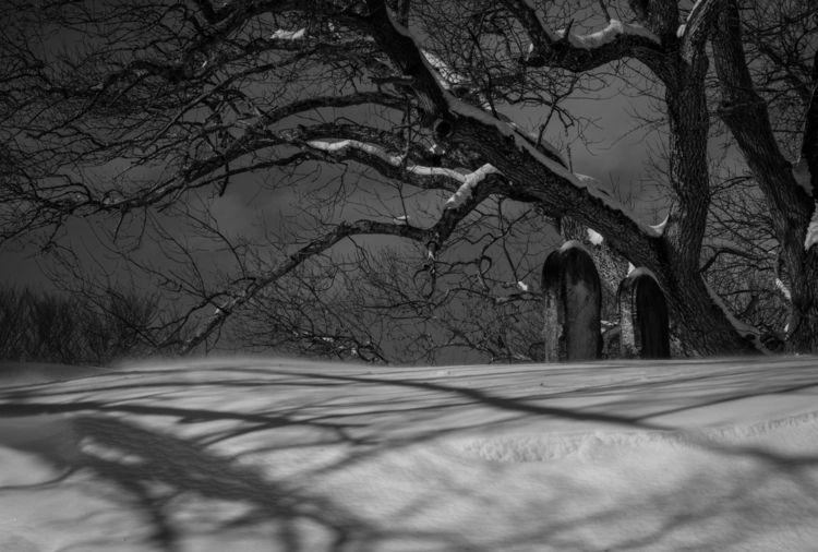 Snowy Slumber- Keeping dead com - wildwildwestlyn | ello