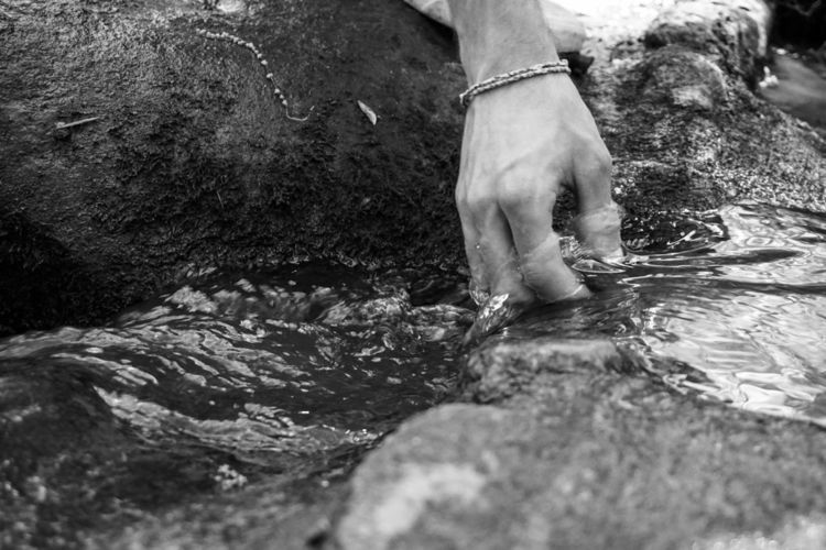 walk woods - blackandwhite, nature - underflow | ello