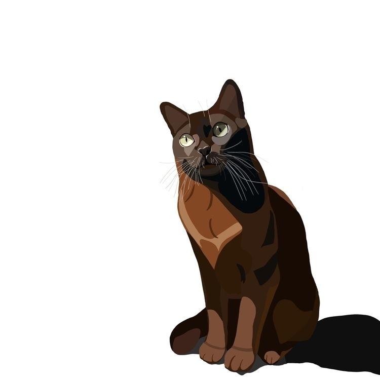 Procreate, illustration cat nam - christinamessick | ello