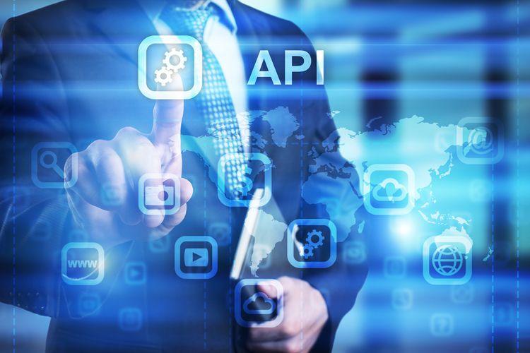 Learn developers API server sof - petrockunlock124 | ello