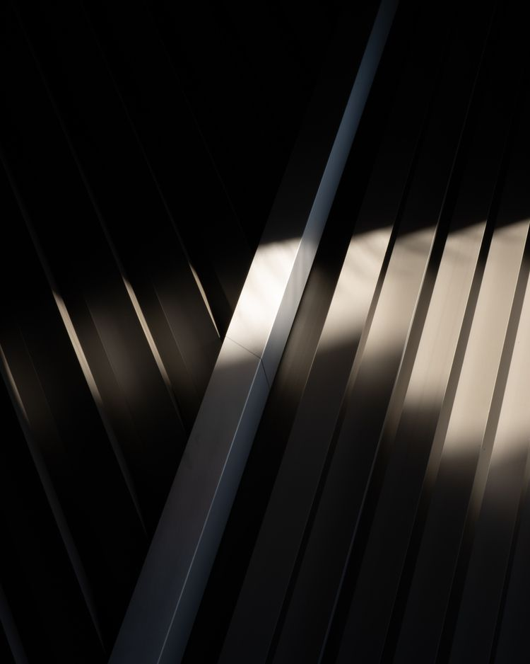 35mm, analog, grainisgood, photography - thalebe | ello