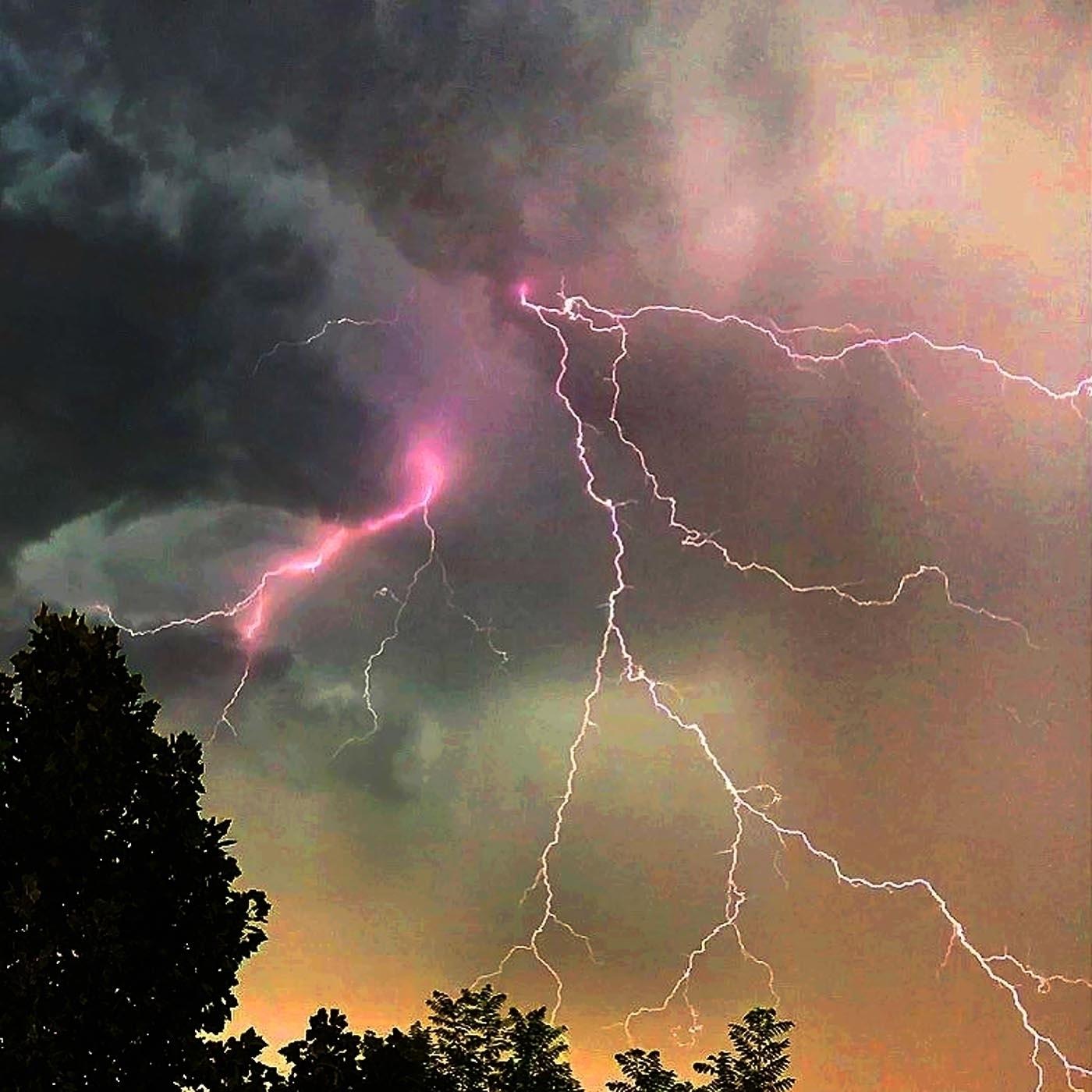 pink lightning California fores - zygzwurx | ello