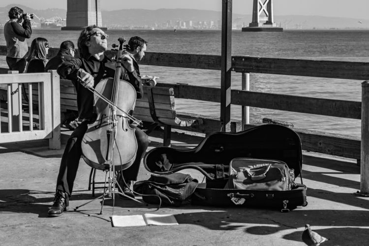 Cellist 2013 12 14 02 San Franc - davidseibold   ello