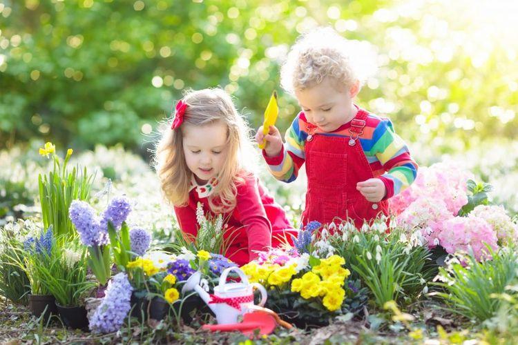 Preschool Education NSW, Austra - littlegraces | ello