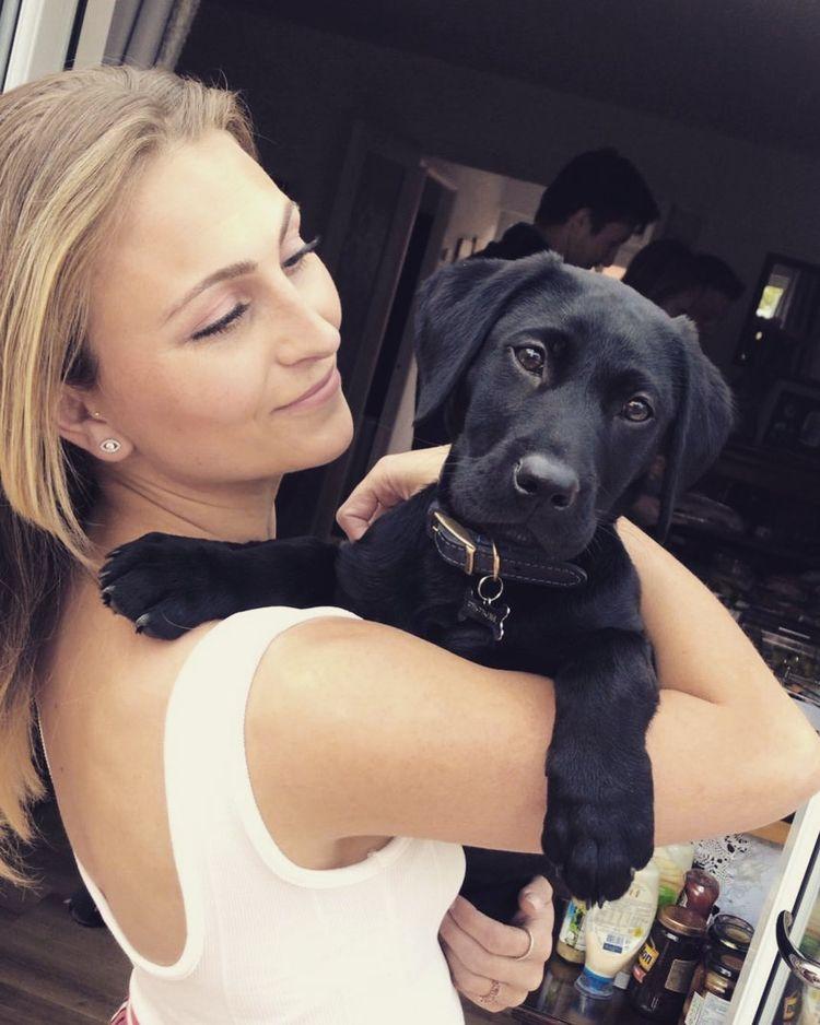 Credit mamma ?  - labradorretriever - pupstime | ello