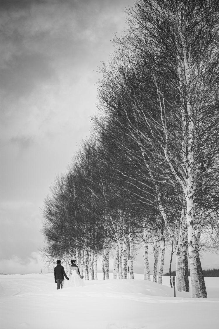 snow, hokkiado, Japan, ekershot - ohyesohya | ello