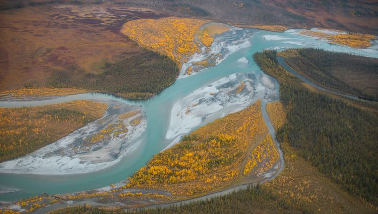 Tundra flows. Alaska. 2020 - thinktomake   ello