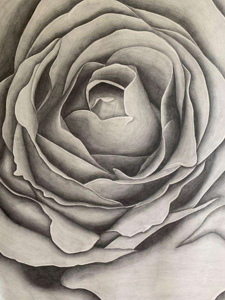 """Blooming"" - Graphite pencil pa - hannahgilbertson | ello"