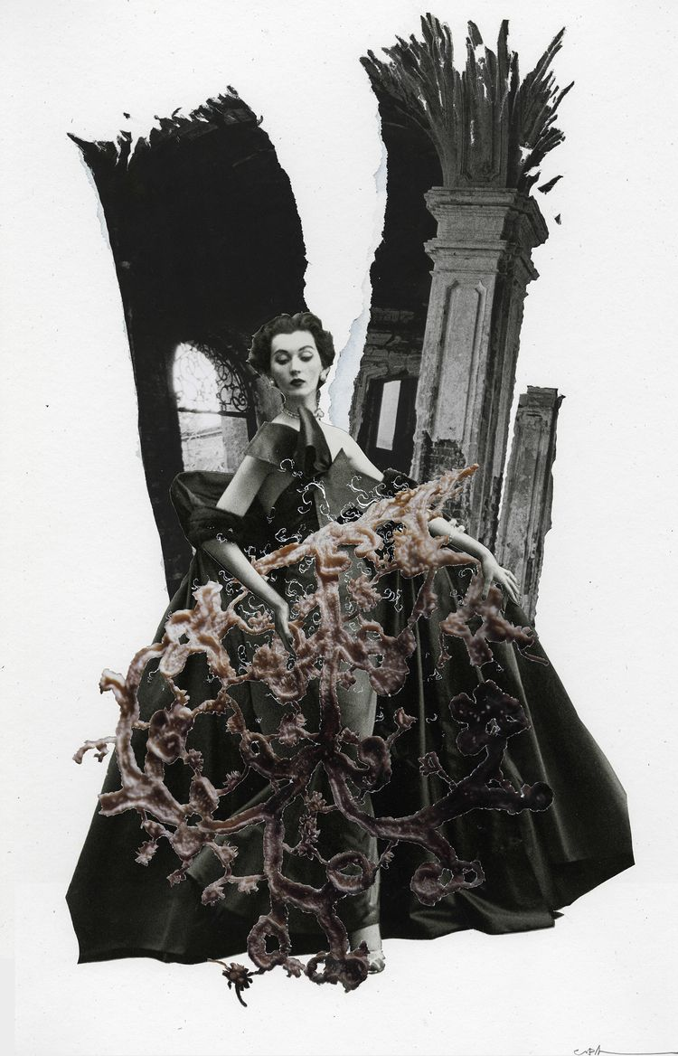 fig. 217 - Root Witch', 2020 13 - curtispatrickarnold | ello