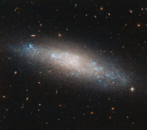 - Galaxy NGC 4455 handful celes - umplus | ello
