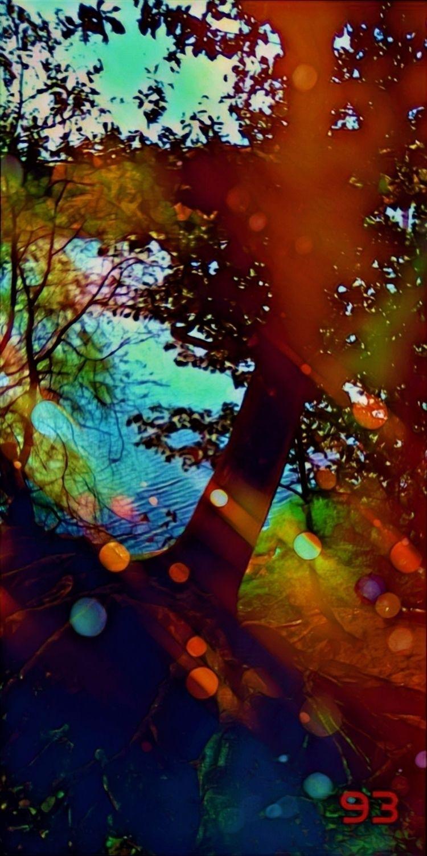 DREAM TREE SEPTEMBER MOOD SHRIN - novaexpress93 | ello