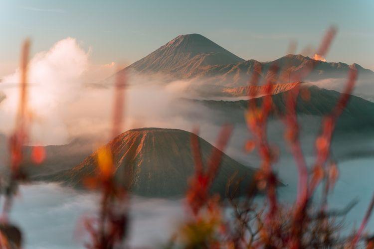 Mt. Bromo, East Java, Indonesia - dis_satisfied | ello