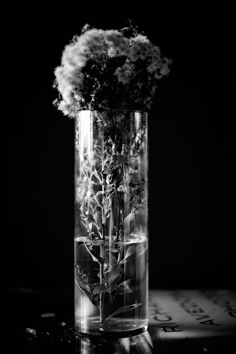 gift vase flowers - photography - junwin | ello