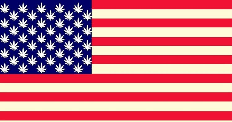 Americans Voted Legalize Drugs  - williamjeson1221 | ello