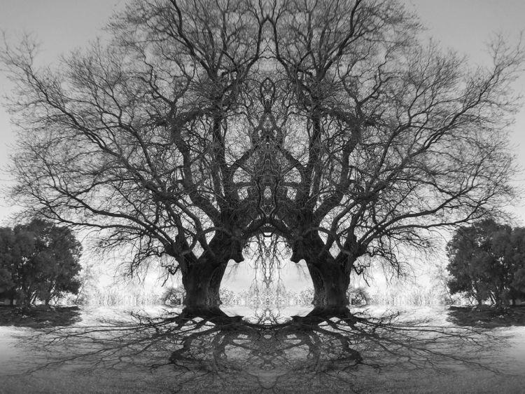 .#sciencefiction - blackandwhitephotography..#fantasy..#surrealism - zygzwurx | ello