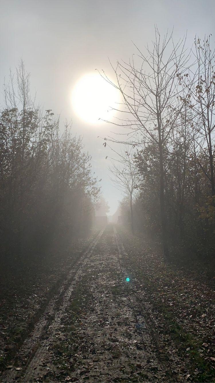 ivanlich Post 10 Nov 2020 18:23:51 UTC   ello
