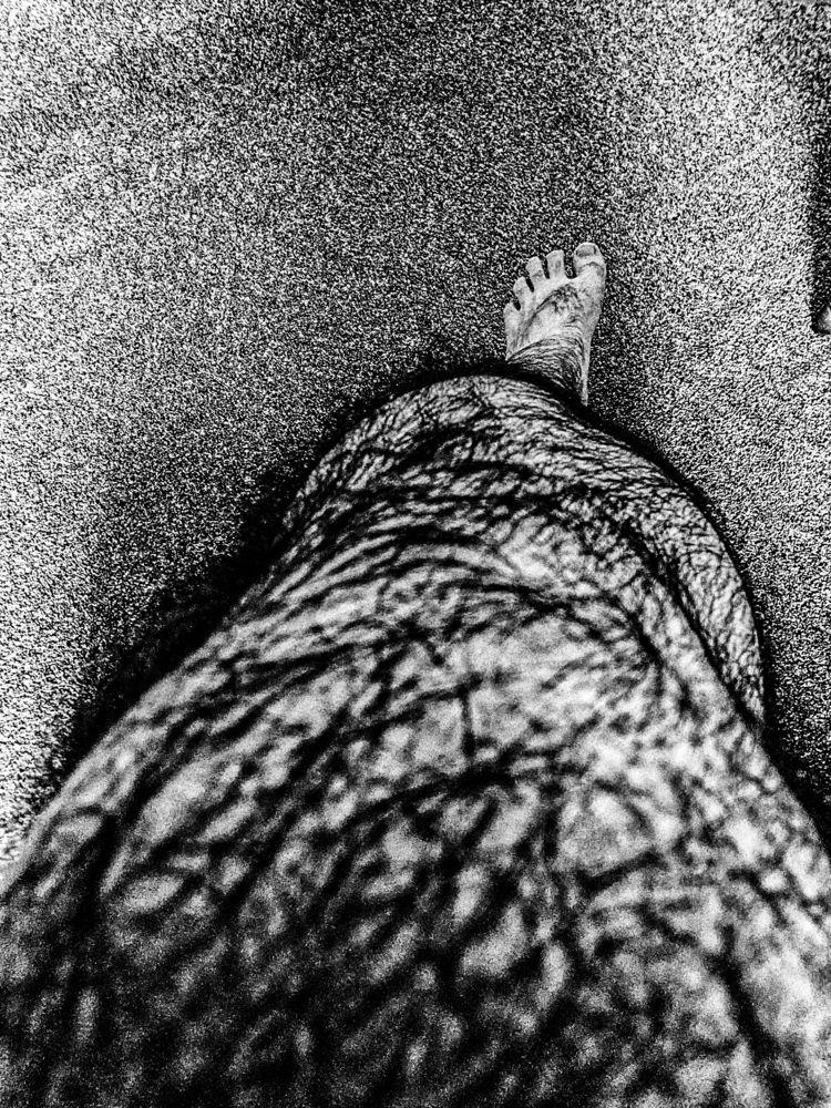 Leg, 11/14/20 - scalzi | ello