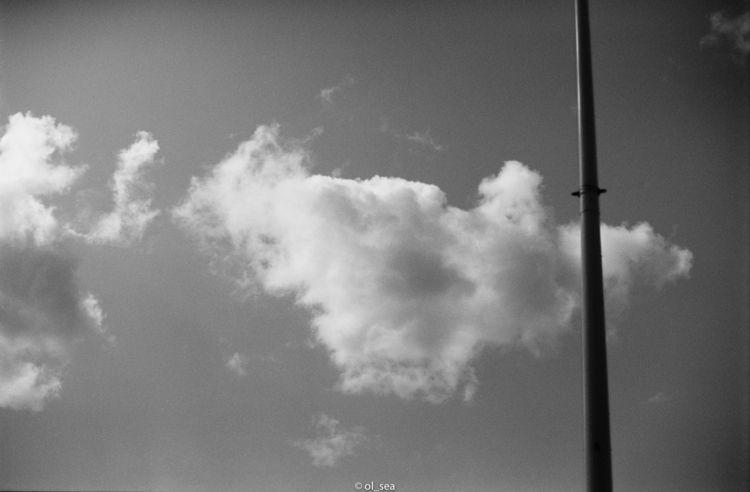 film ferrania p30 - photo, blackwhite - ol_sea   ello