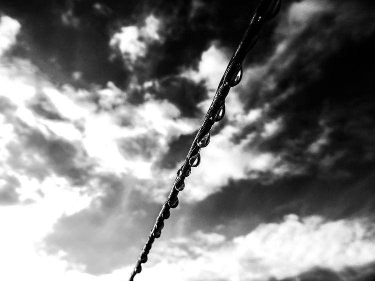 give rain pearl necklace - photography - chafikaaitoudia | ello