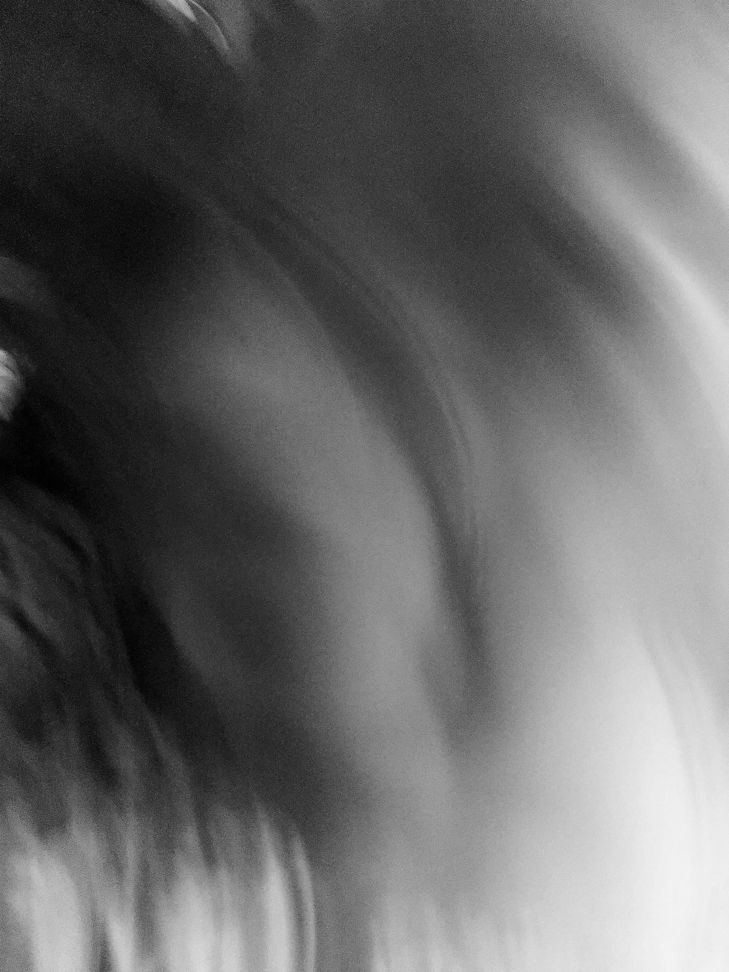 Selfless Portrait (collaboratio - divinewind   ello