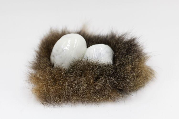 porcelain eggs fox fur nest - elvanna   ello