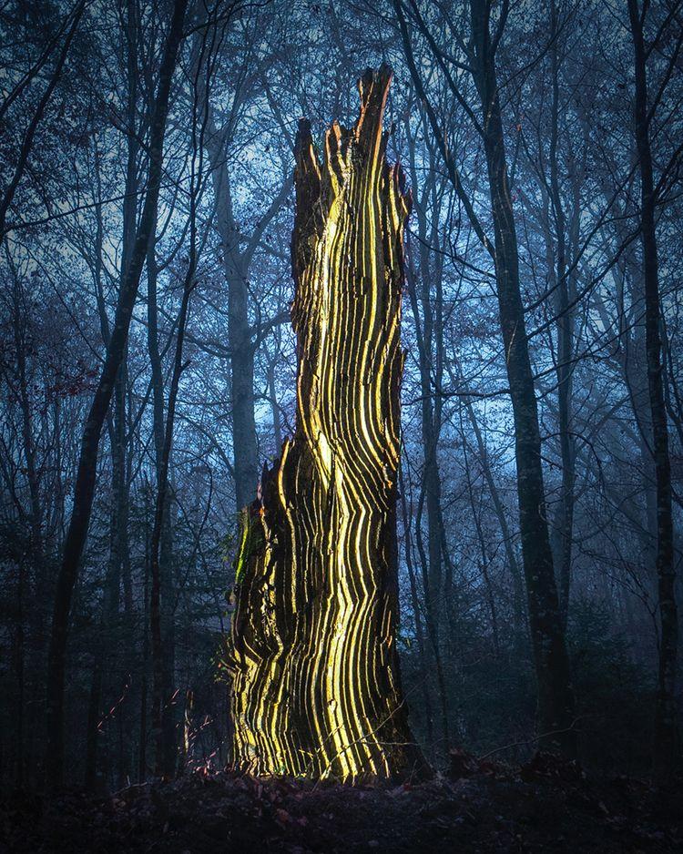 Lighthouse foggy woods. Project - philipp_frank | ello