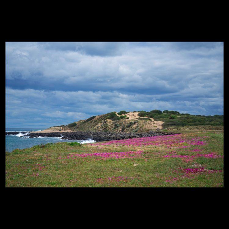 coast. . 1176 141120 - photography - matthewschiavello | ello