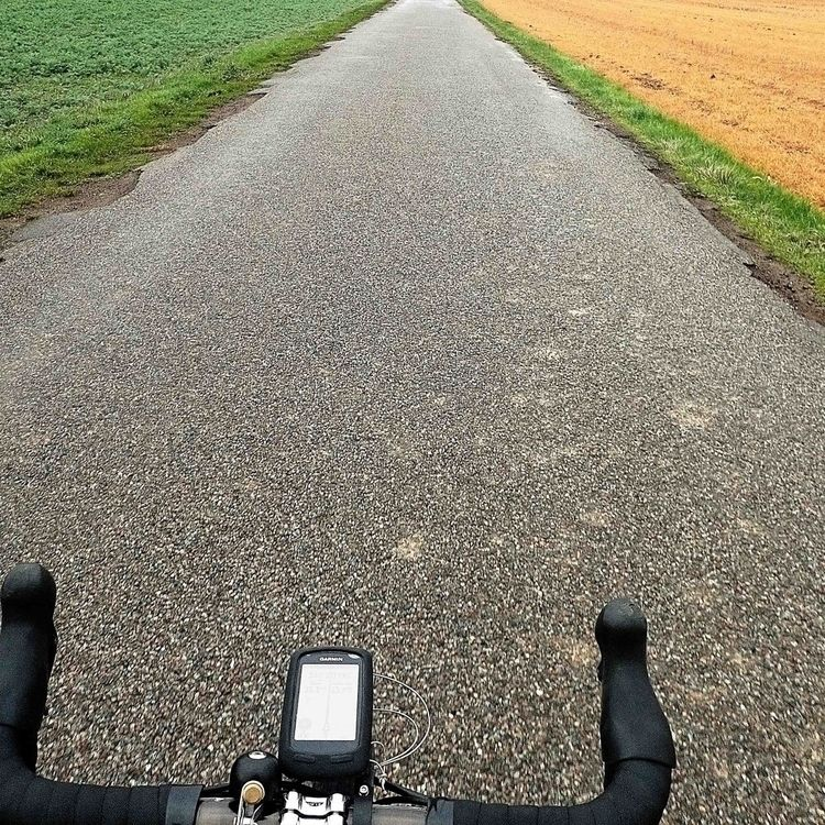 2021 green yellow ? riding disc - gekopaca | ello