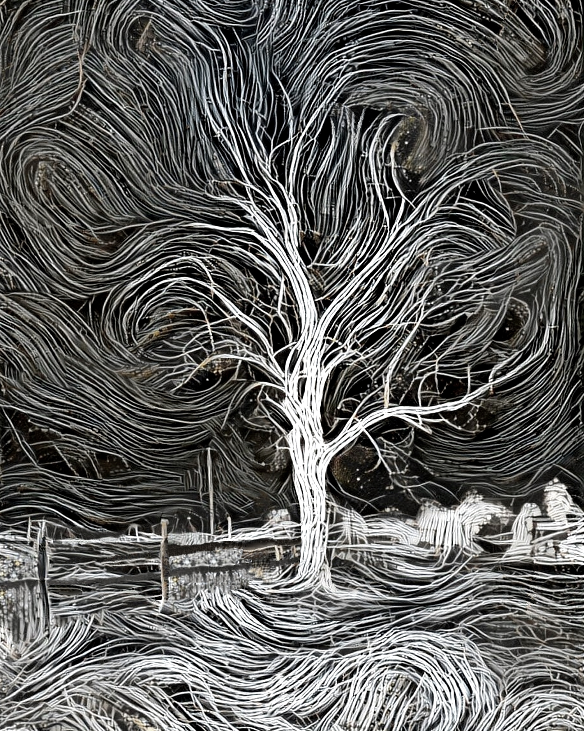 Tree black white 3 trees - photography - kenlong | ello