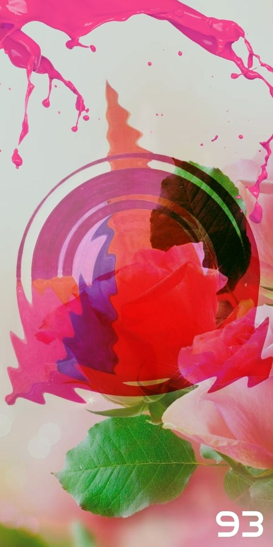 ROSE SPLASH BACKLIGHT FEATURING - novaexpress93 | ello