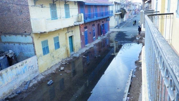 Homestreet, 2021. Sewage road w - afropolitan | ello