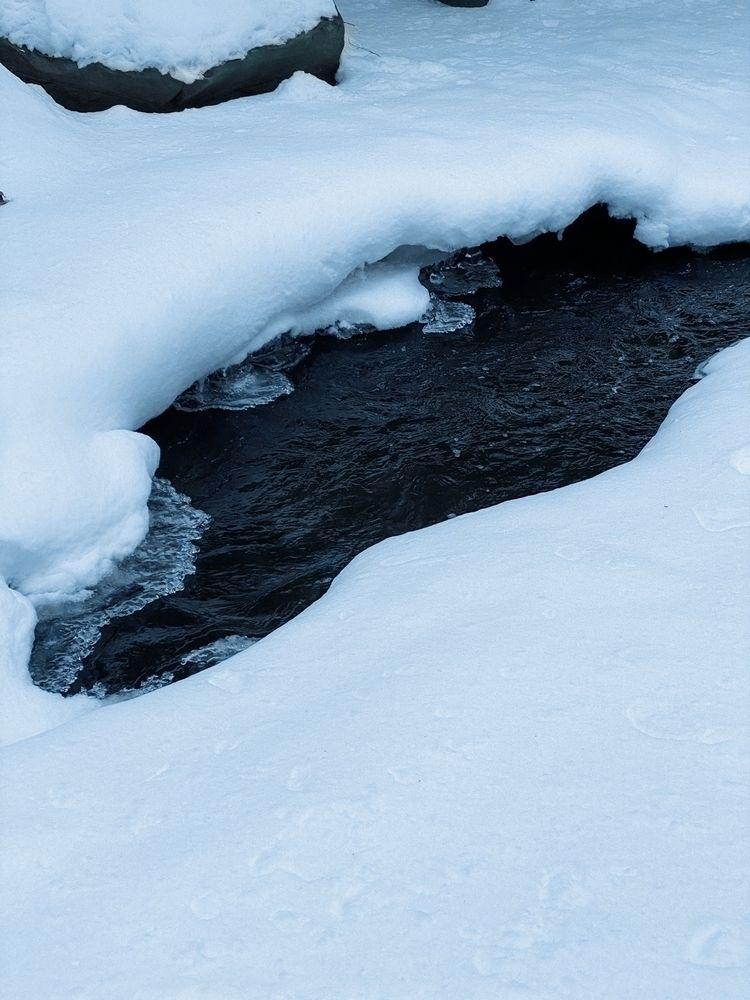 Exploring great outdoors. Froze - catfishsoupftw   ello