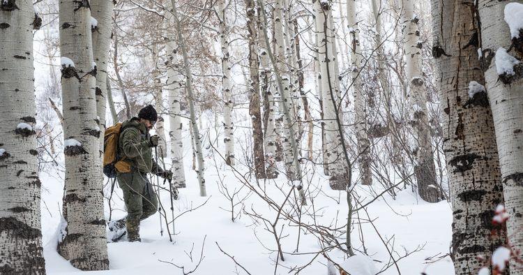 Snowshoeing. Colorado. 2021 - thinktomake   ello