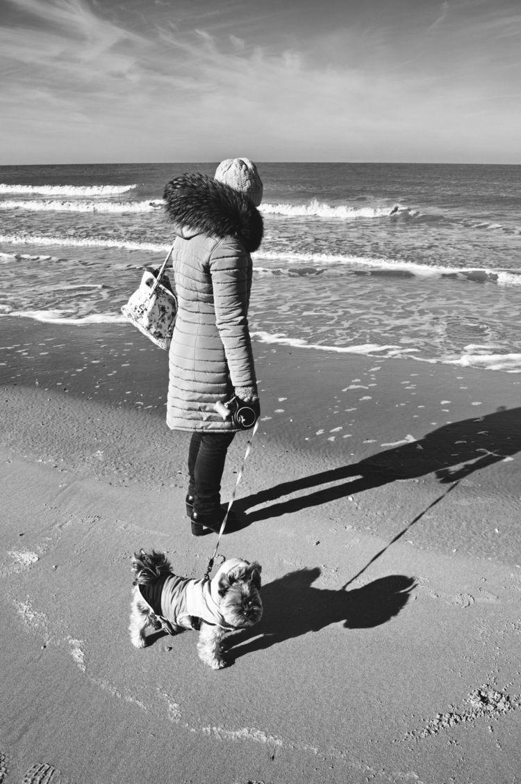 walk, beach, belgium, bredene - jdec | ello