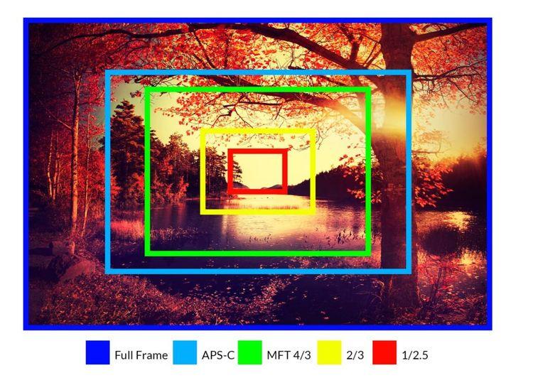 Camera Sensor Size Explained +  - creativeraw | ello
