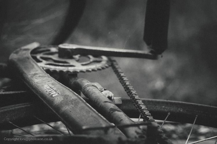 Steel Bicycle - toni_ertl | ello