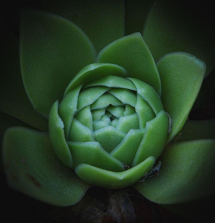 nature, travelphotography, worldwide - _erick_ | ello