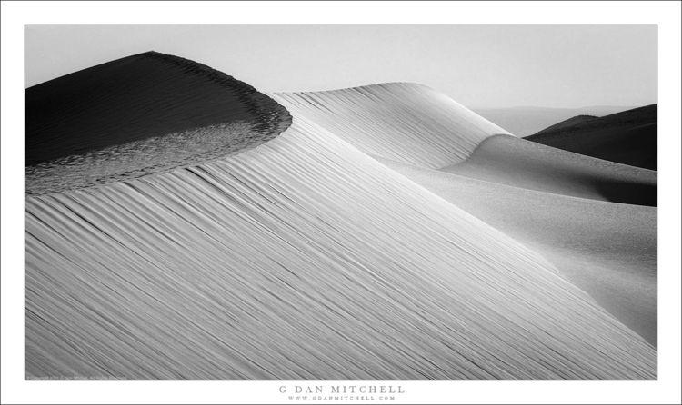 Sea Dunes. Copyright 2021 Dan M - gdanmitchell   ello