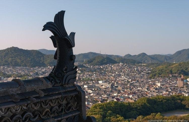 shachihoko statue roof Himeji c - explodingfish | ello