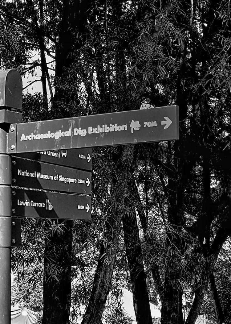 naturalistic walkway - dp_viewpoint - noerdhayana | ello